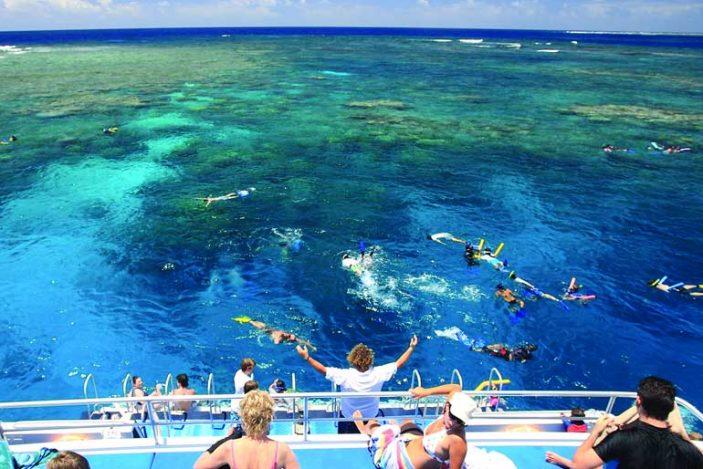 calypso-snorkel-port-douglas