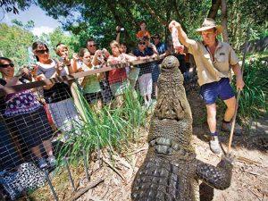 hartleys-crocodile-adventures